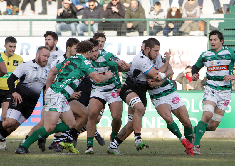 benetton zebre 2017