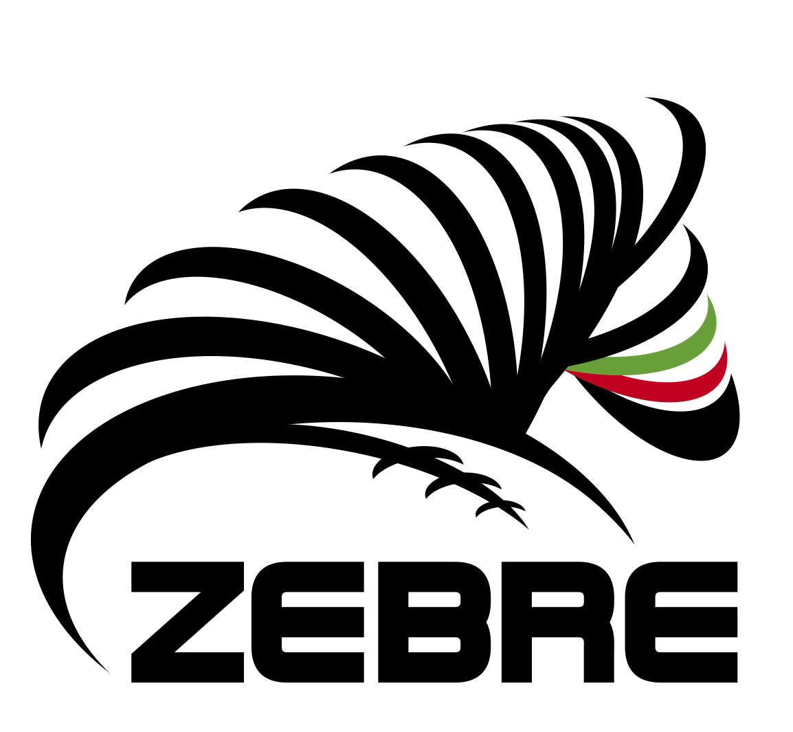 LOGO Zebre