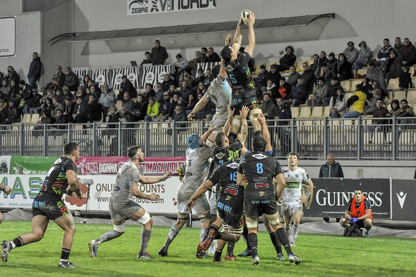 Nagle Zebre Warriors